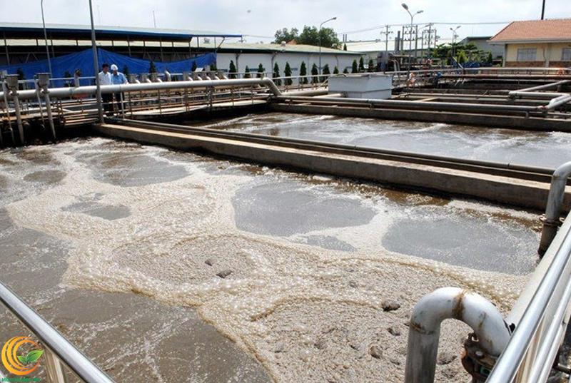 Bể xử lý nước thải bằng phương pháp sinh học (vi sinh)